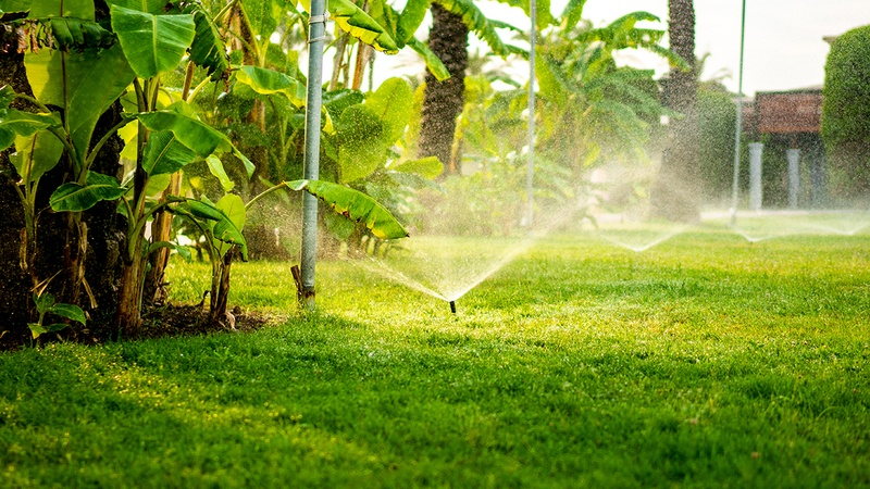 Central Florida Irrigation Systems