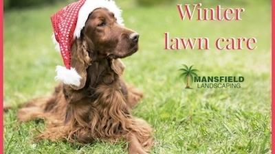 Lawn Care During Winter.