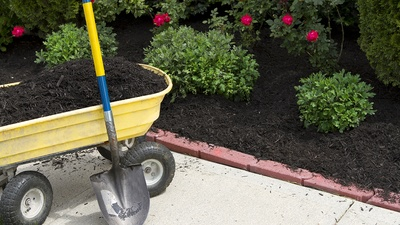 What's the best eco-friendly mulch?
