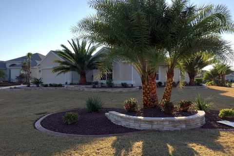 Frontyards #5